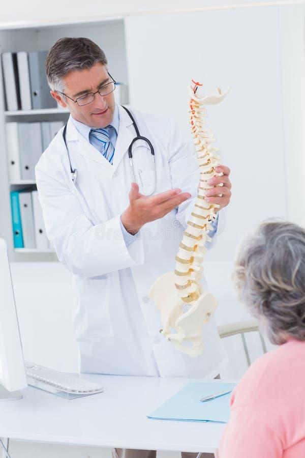 Doktorski explaning anatomiczny kręgosłup żeński pacjent zdjęcie royalty free