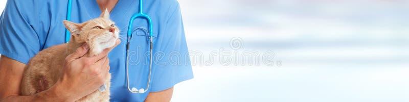 Doktorski weterynarz z kotem zdjęcia royalty free