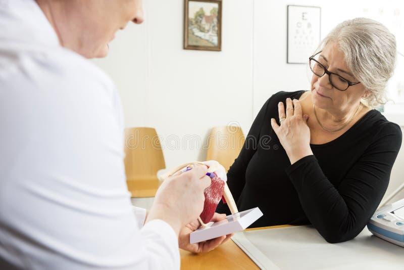 Doktorski Wyjaśnia Naramienny Rotator mankiecika model Starsza kobieta obrazy stock