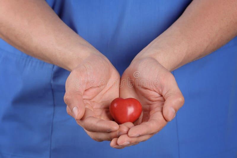 Doktorskiego mienia mały serce, zbliżenie obrazy stock