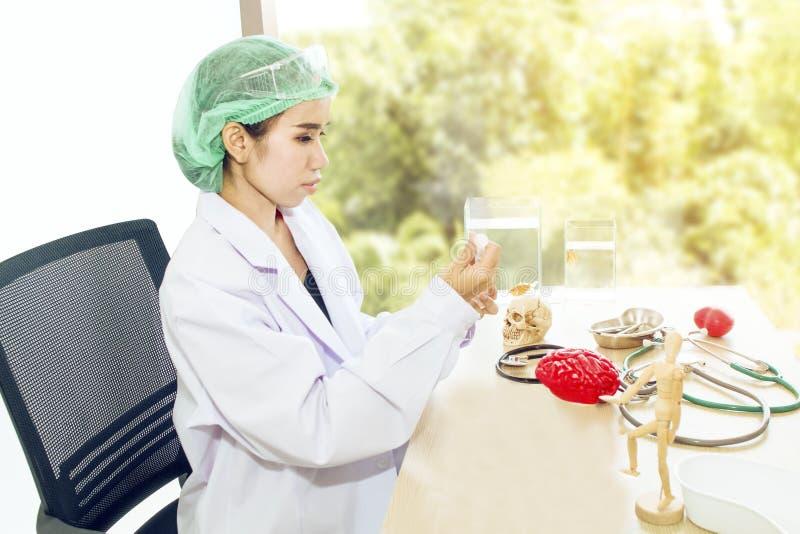 Doktorskvinna som arbetar med det skallemodellen, förstoringsglaset och fisken arkivfoto