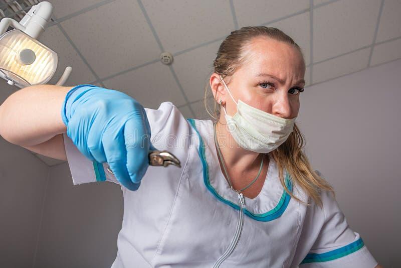 Doktorskvinnan i en medicinsk maskering och med kirurgisk tång i hennes händer tar bort en tand, närbild royaltyfri fotografi