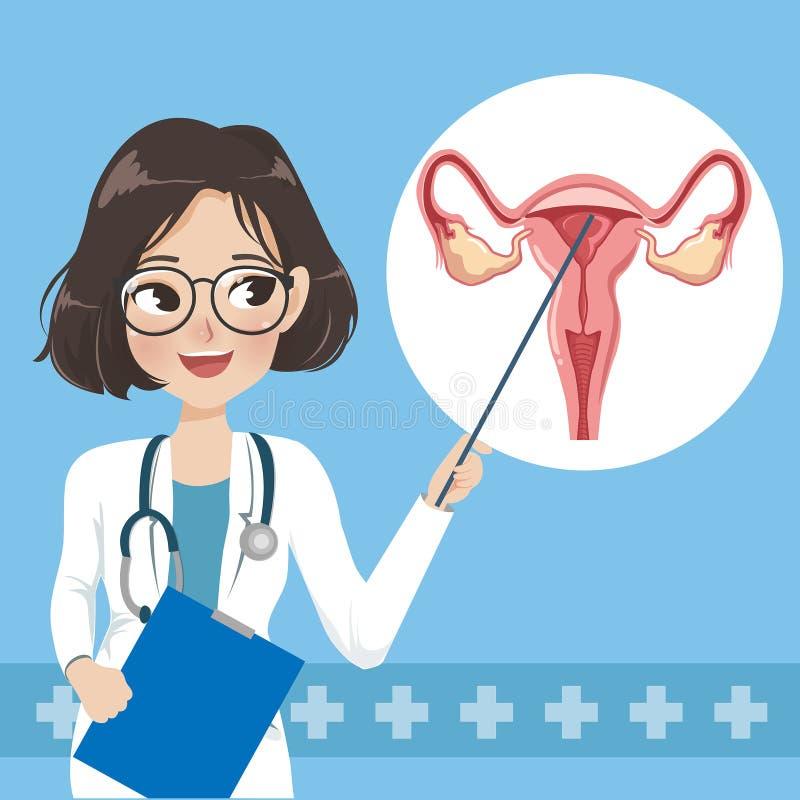 Doktorskvinnan undervisar och beståndsdelar av den mänskliga livmodern stock illustrationer