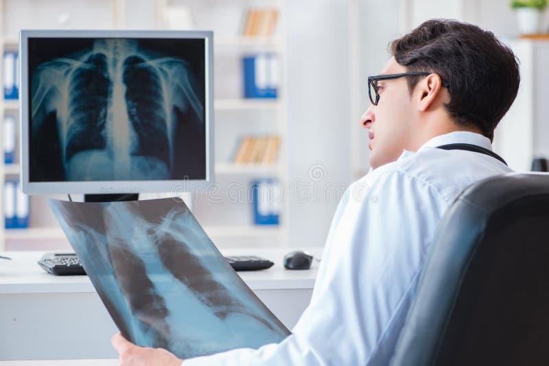 Doktorsradiologen som ser röntgenstrålebilder arkivfoto