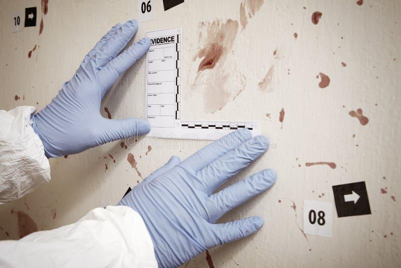 Dokumentation von blutigen Beweisen lizenzfreie stockbilder