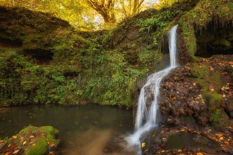 Dokuzak vattenfall i det Strandja berget, Bulgarien under höst Härlig sikt av en flod med en vattenfall i skogen arkivfoton