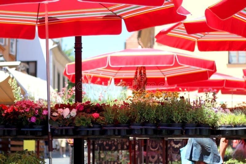 Dolacmarkt, Zagreb, Kroatië royalty-vrije stock afbeeldingen