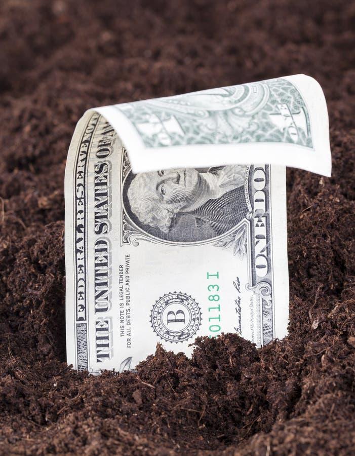 dolar z nas obraz royalty free