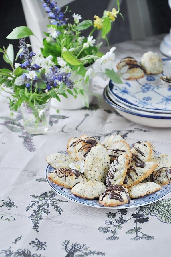 Dolce del biscotto del ` di Madeleine del ` con i semi di papavero Della sorgente vita ancora fotografia stock