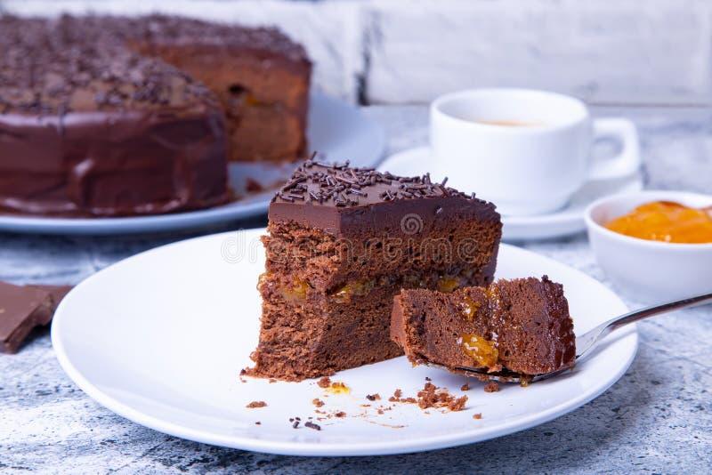 Dolce di Sacher Dessert austriaco tradizionale del cioccolato fotografia stock libera da diritti