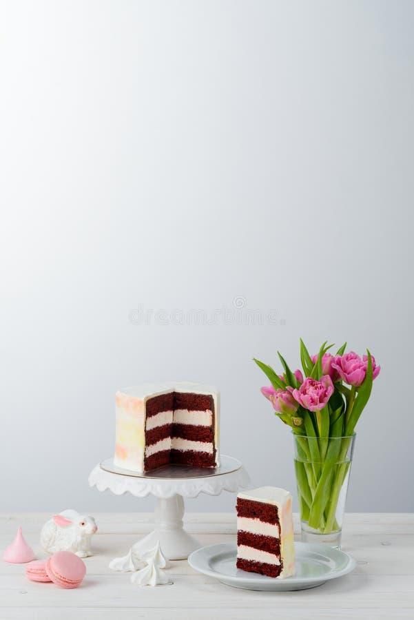 Dolce e tulipani rossi del velluto fotografie stock libere da diritti