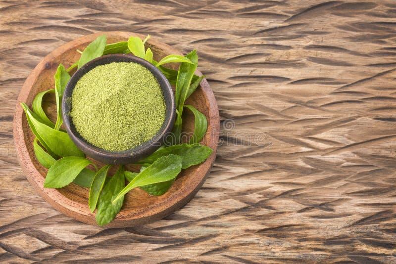 Dolcificante naturale in polvere dalla pianta di stevia - stevia rebaudiana Vista superiore fotografie stock libere da diritti