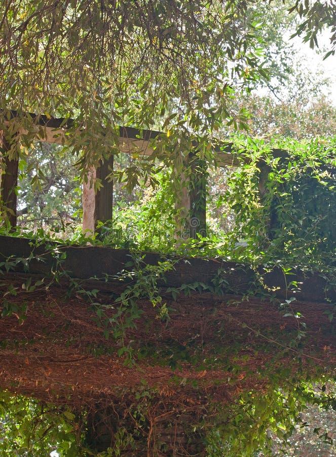 Dold balkong för murgröna fotografering för bildbyråer