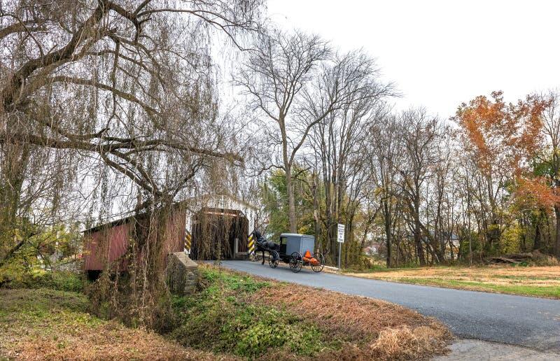 Dold bro i höst med den Amish vagnen royaltyfria foton