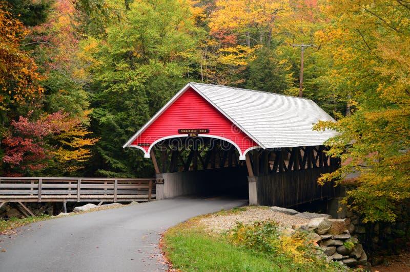 Dold bro med nedgånglövverk arkivbilder