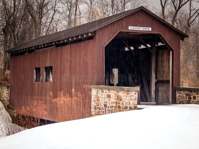 Dold Everhart bro i Harrisburg Pennsylvania fotografering för bildbyråer