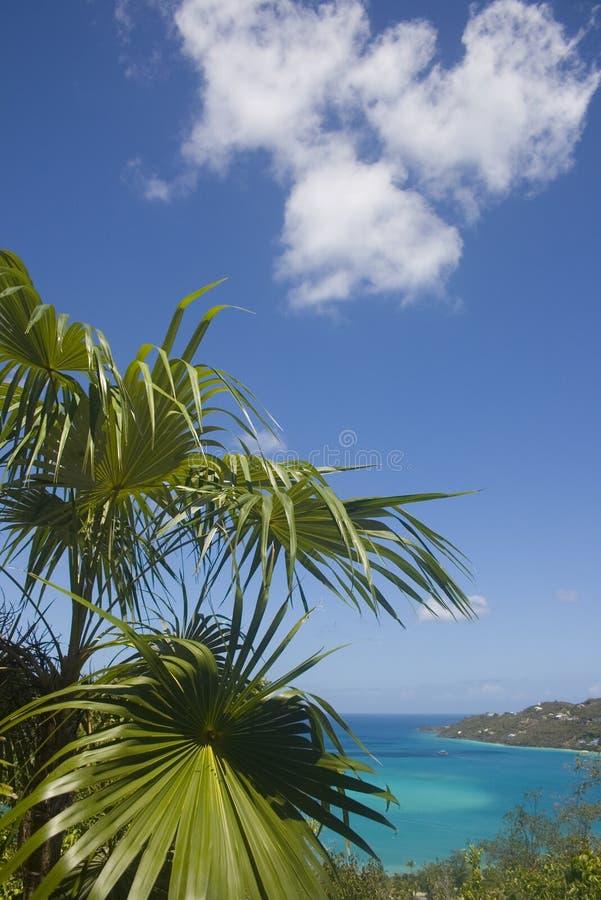 dold strand arkivfoto