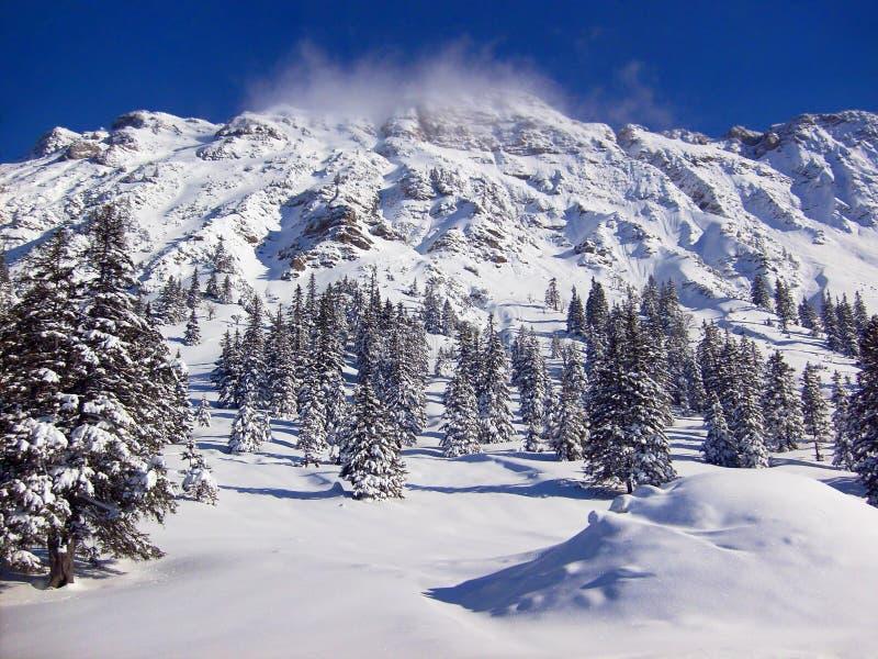 Dolda berg för Snow fotografering för bildbyråer