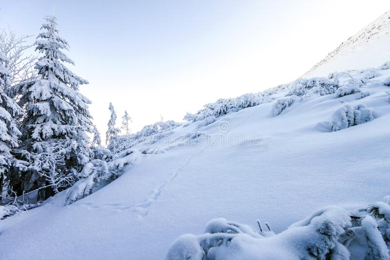 Dolda kullar för snö i berg arkivbilder