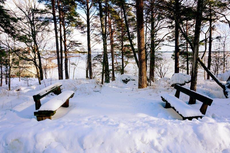Dolda trästolar för snö nära havet royaltyfria foton