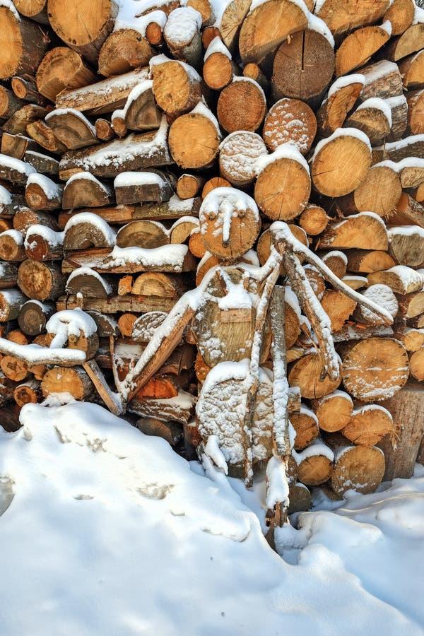 Dolda vedträstatyetter för snö arkivfoto