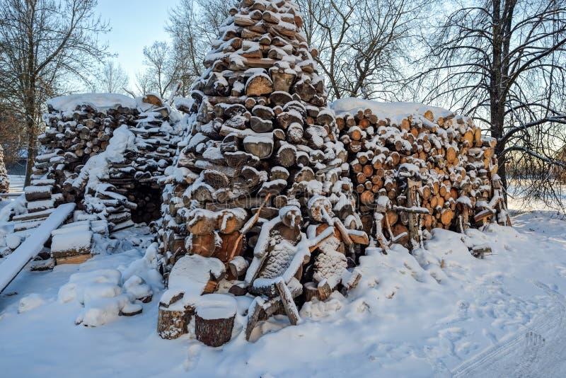Dolda vedträstatyetter för snö arkivfoton