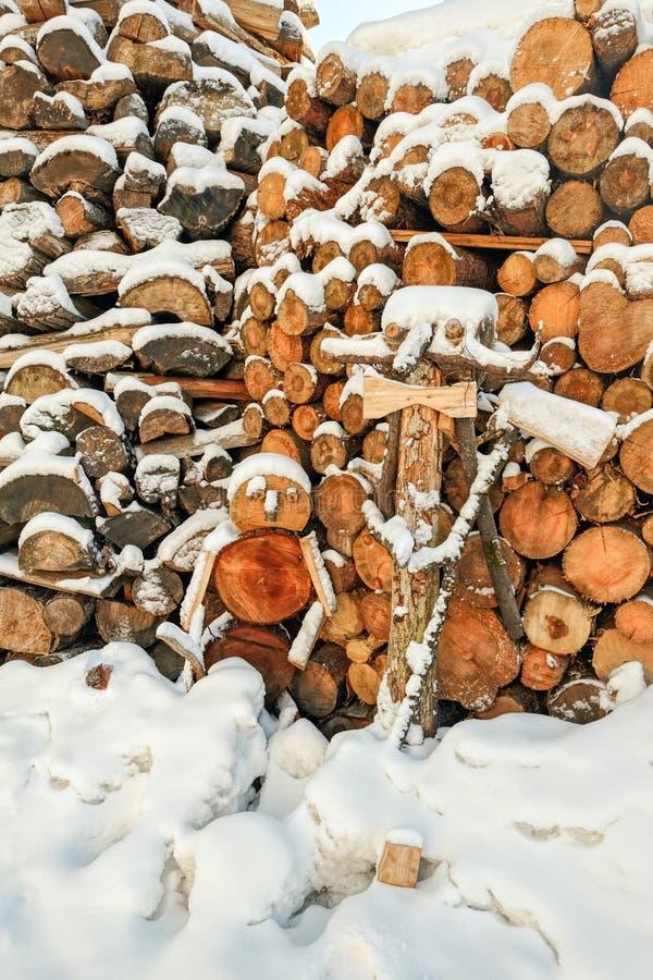 Dolda vedträstatyetter för snö arkivbild