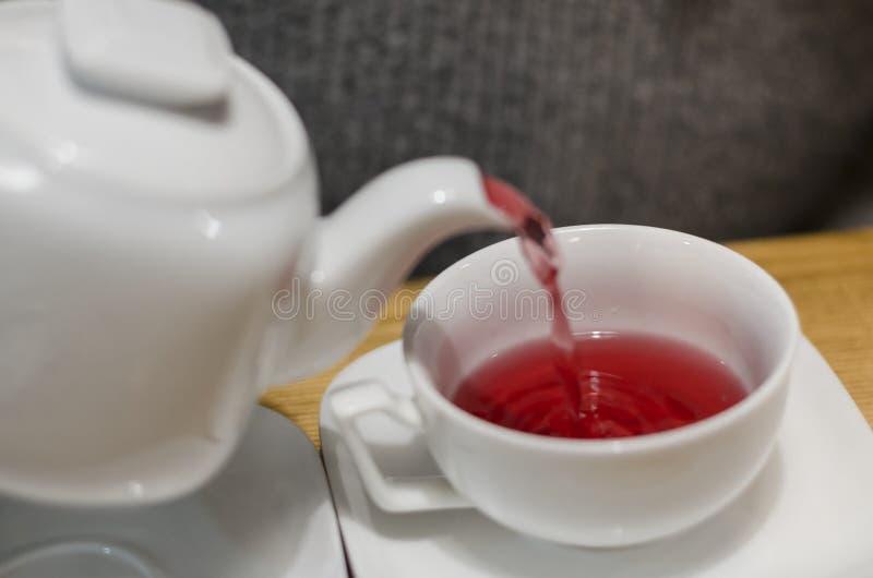 Dolewanie czerwona herbata w filiżankę obrazy royalty free