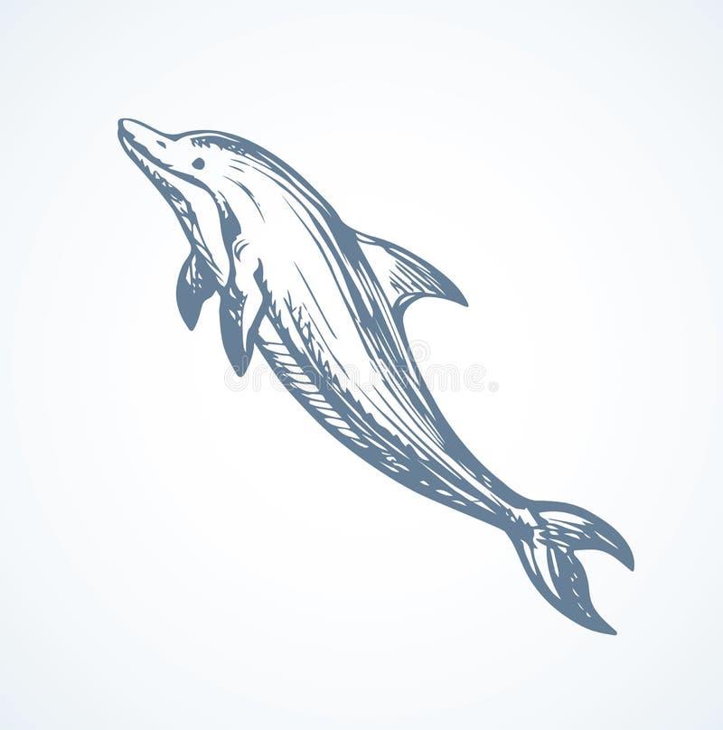 dolfijn Vector tekening stock illustratie
