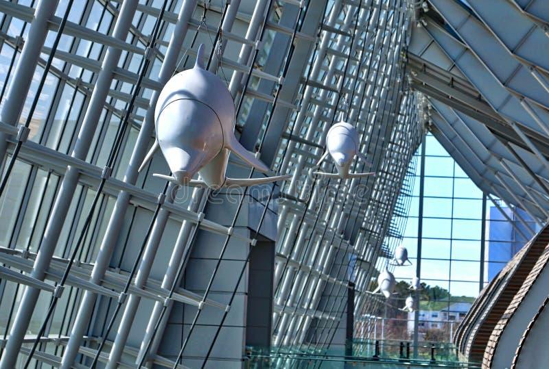 Dolfijnen binnen het Centrum van Virginia Beach Convention en van de Conferentie stock foto