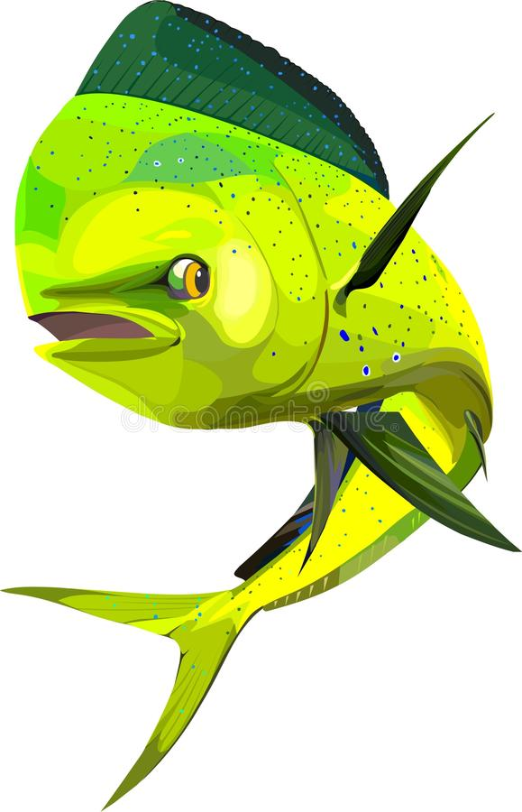 Dolfijnvissen vector illustratie