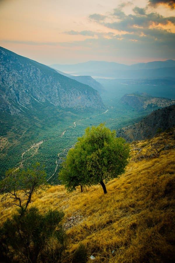 Dolina blisko Delphi obraz royalty free