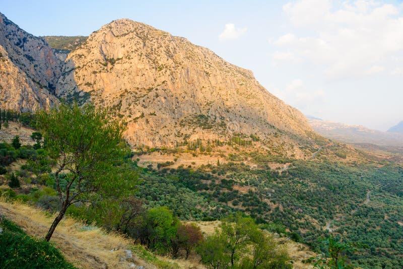 Dolina blisko Delphi zdjęcia stock
