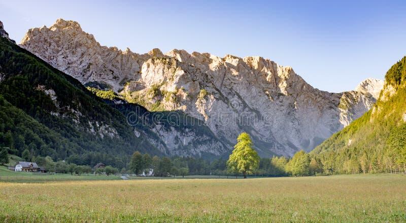 Dolina de Logarska - vallée de Logar, Slovénie dans le lever de soleil photos stock