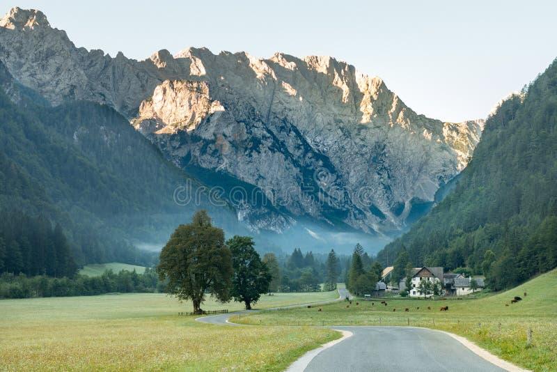Dolina Logarska - долина Logar, Словения в восходе солнца стоковые фото