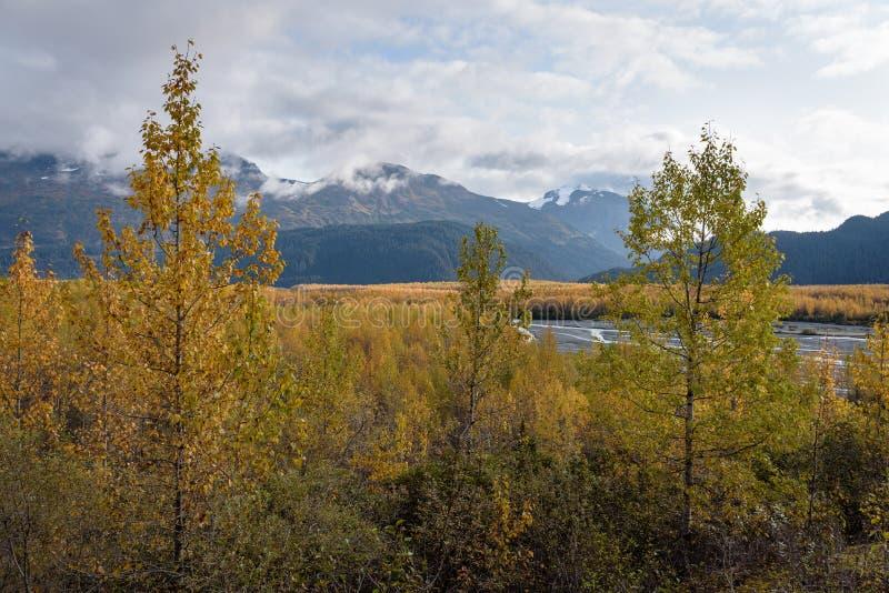 Dolina rzeki Resurrection w glacier Exit, Park Narodowy Kenai Fjords, Seward, Alaska, Stany Zjednoczone zdjęcie royalty free