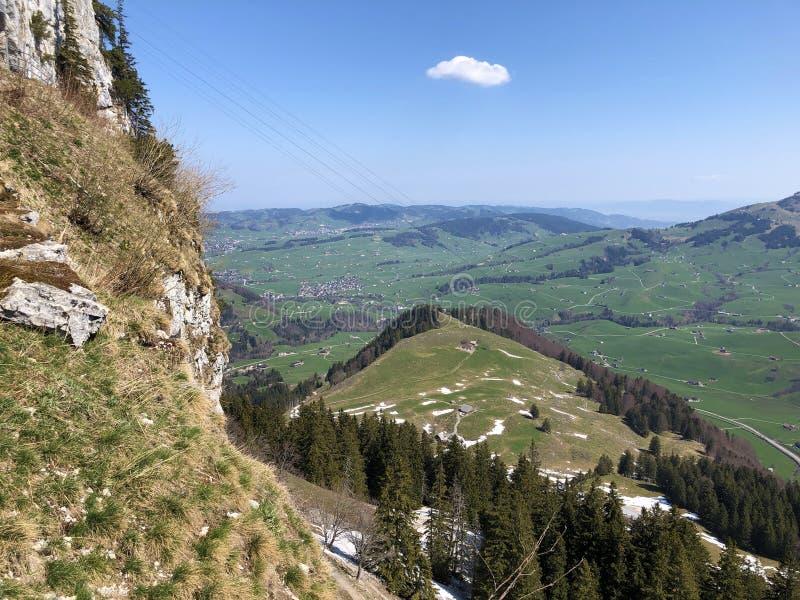 Dolina Schwendebach strumie? w Appenzellerland regionie zdjęcia stock