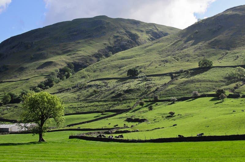 doliny kształtują teren Yorkshire fotografia stock