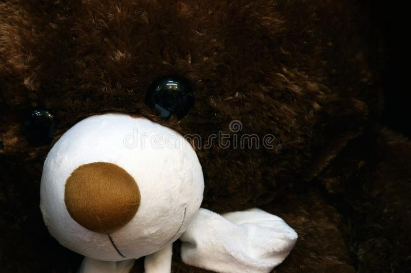 Doll cute teddy bear brown face close up, little bear doll, face teddy bear selective focus stock image