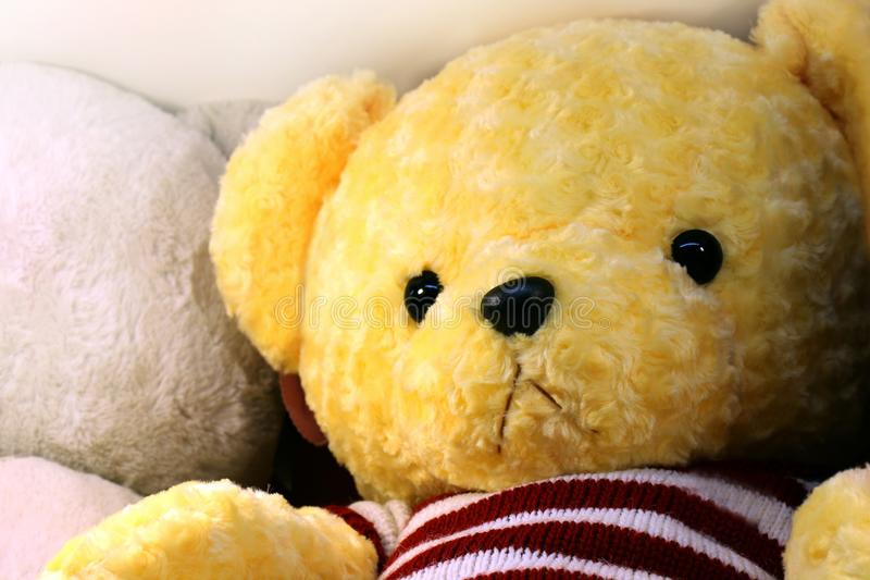 Doll cute teddy bear yellow face close up, little bear doll, face teddy bear selective focus stock images