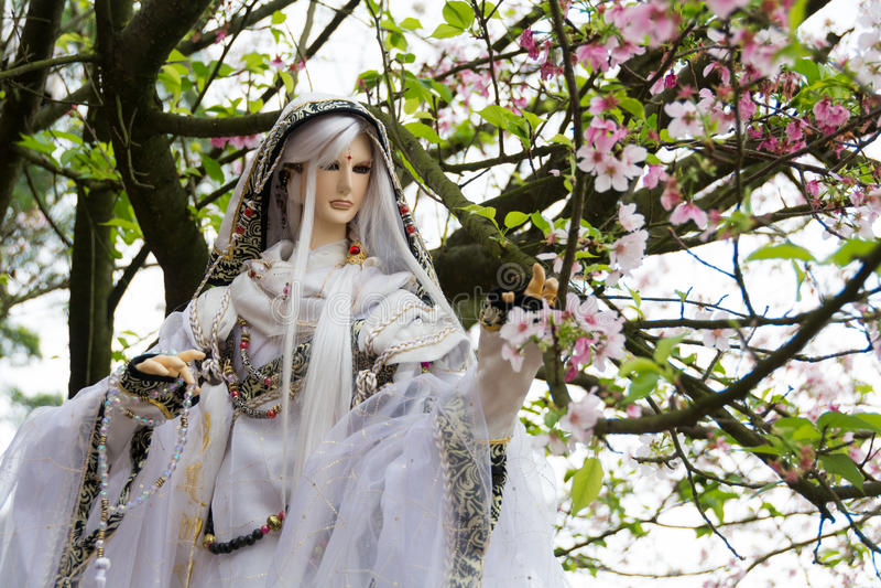 Doll en Kersenbloesem royalty-vrije stock fotografie