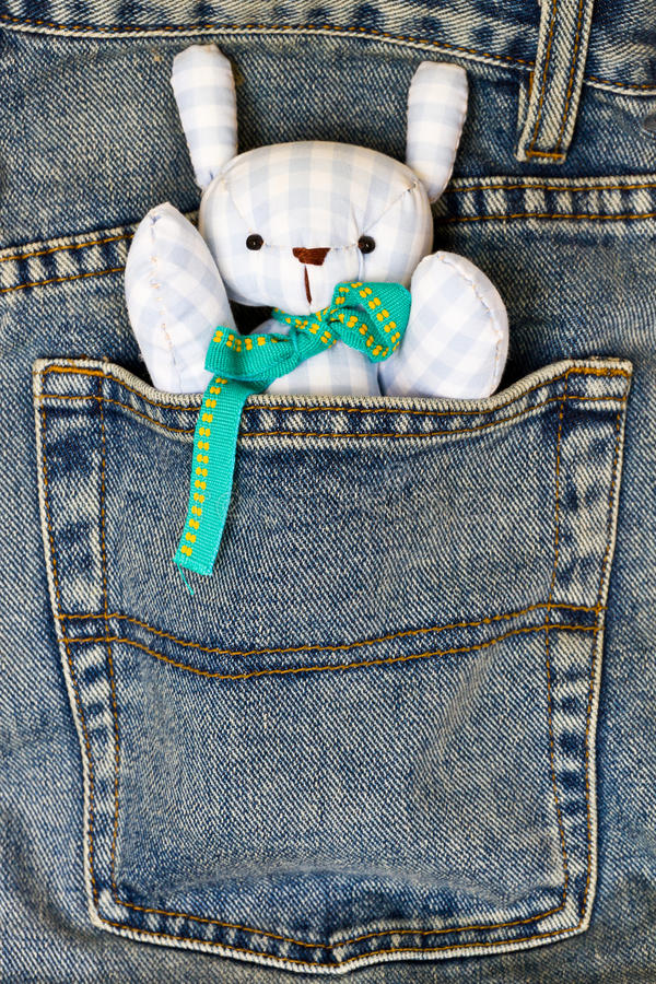 Doll In The Pocket Stock Image
