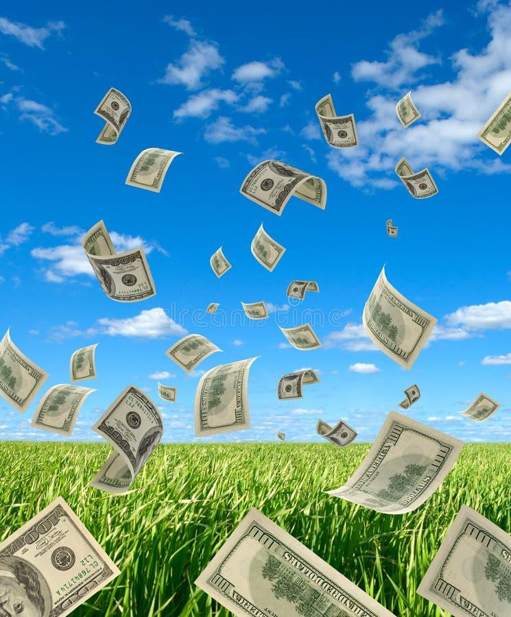 Dollar auf Hintergrundhimmel und -kräutern. stockfotografie