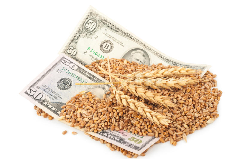 Dollar banknote and wheat grains royalty free stock images