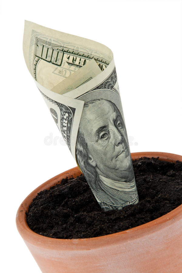 Download Dollar Bill In Flower Pot. Interest Rates, Growth. Stock Photos - Image: 15366703