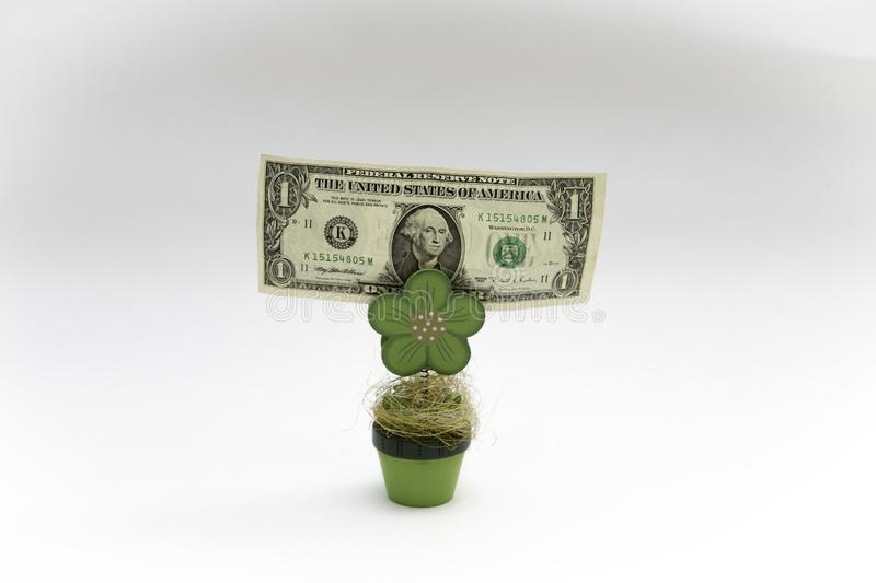 A dollar bill hold by a wooden plant at the white background royalty free stock images