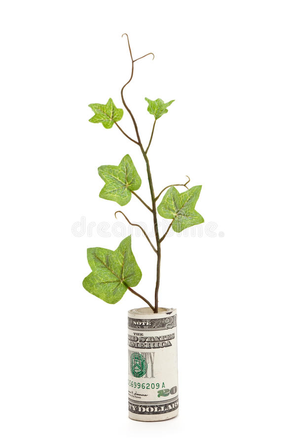 Download Dollar and Green Sprout stock photo. Image of business - 15815364
