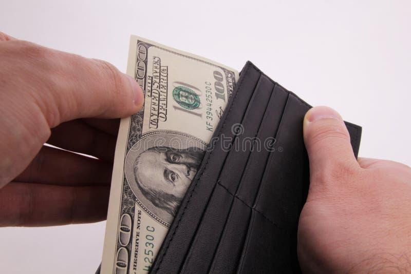Dollar i purcen arkivbilder