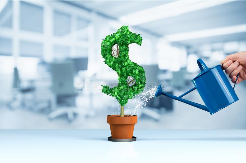Dollar income growth concept. Income growth represented by plant in shape of dollar symbol watered by CFO, investor, stockholder and similar business person royalty free stock photography