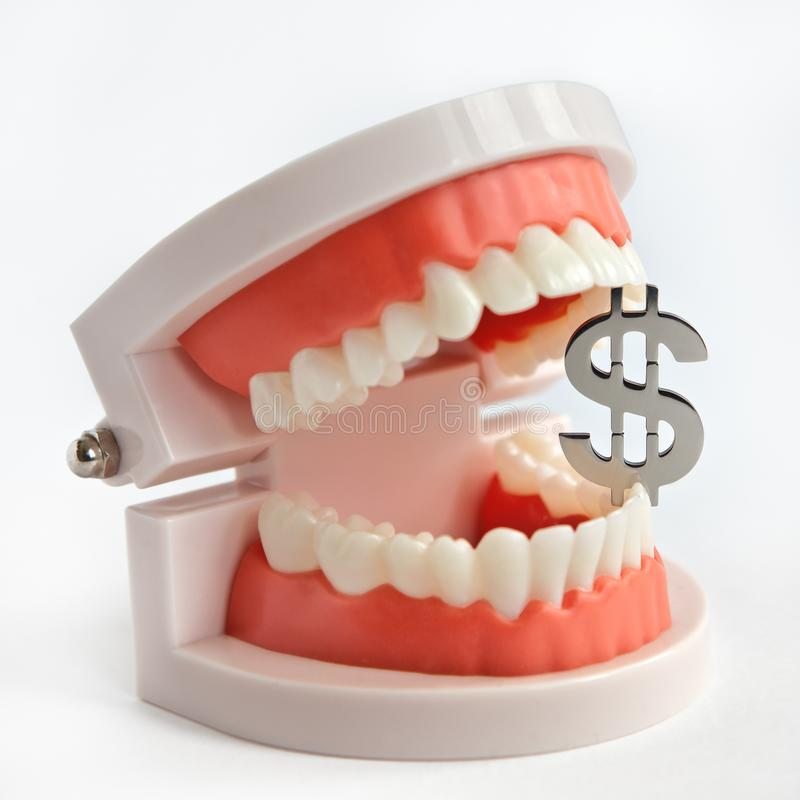 Dollar sign between the teeth in a man`s jaw layout. royalty free stock photos